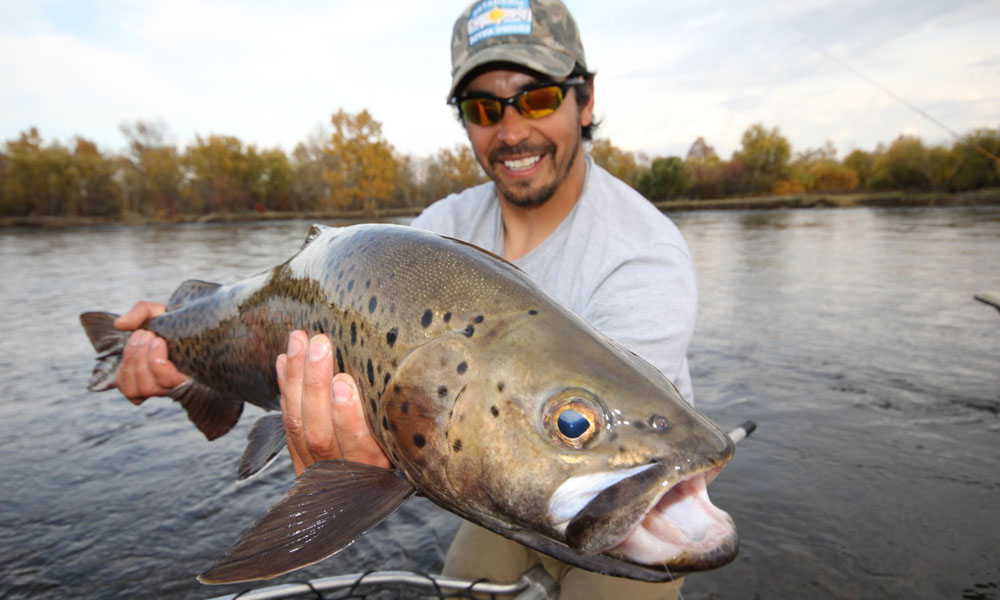 big-trout-mongolia